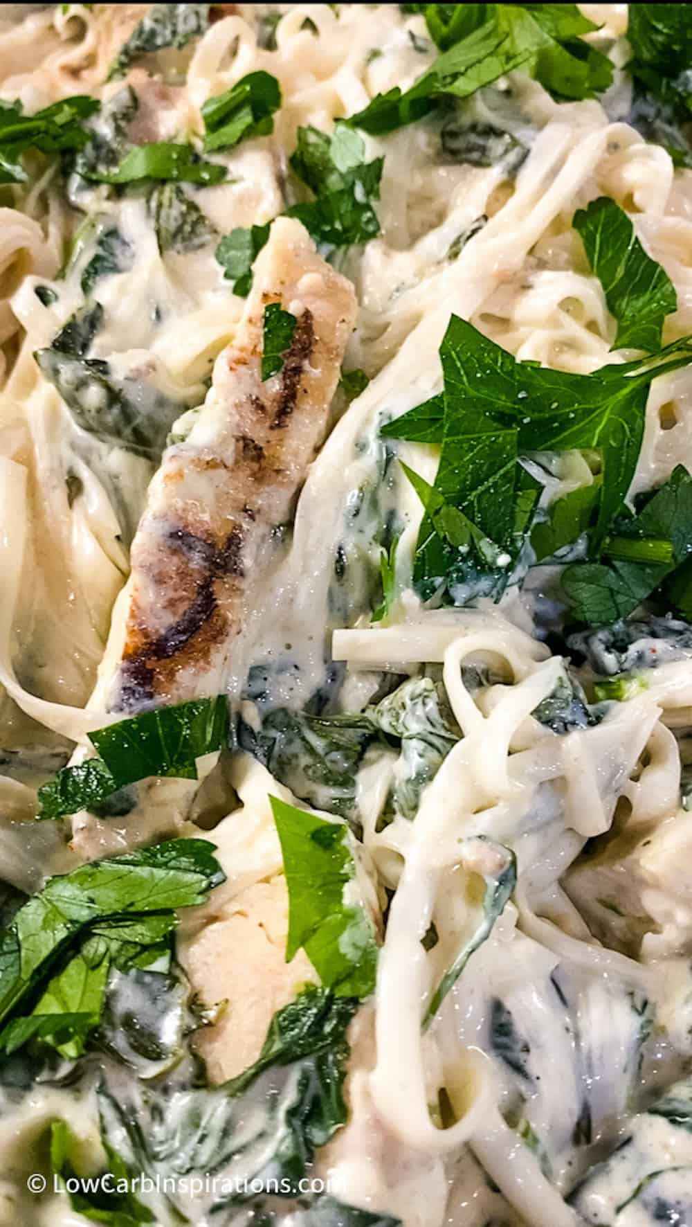 Close up of the baked Low Carb Alfredo Chicken Pasta Recipe