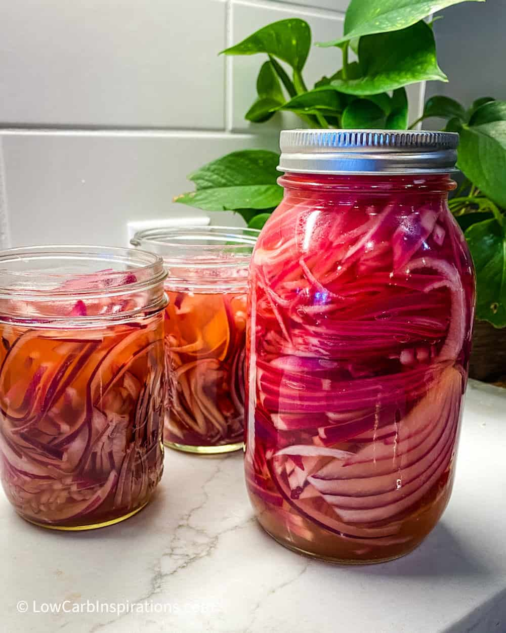 Jar with onions with a plant in the background