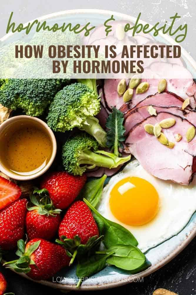 How Obesity Is Affected By Hormones